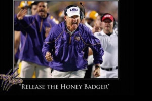 And then there is the Honey Badger Pictures!