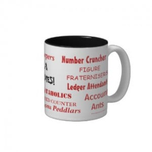 For Accountants CPAs Auditors CFOs FDs and Financial Managers