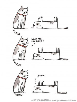 Funny Yoga Joke Cartoon Images - When I asked you if you were flexible ...