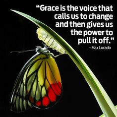 butterfly quotes inspirational | butterfly2.jpg More