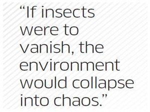 Edward O Wilson Quotes