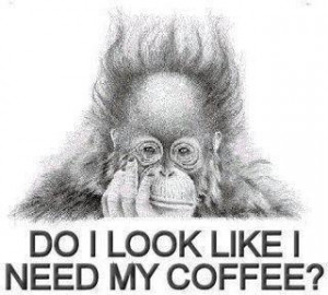 Do I Look Like I Need My Coffee.