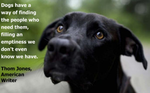 dog lovers quotes – Bing Images