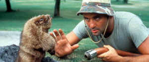 40 Of Bill Murray's Greatest Movie Quotes