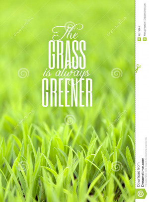 Green grass with typography quote about the grass always being greener ...