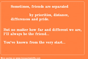 Best Friends Quotes - Sometimes friends are separated by priorities