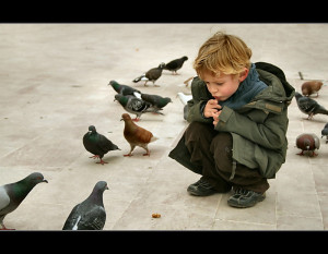 boy waiting among pigeons for them to eat his pretzel