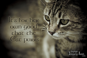It's for her own good that the Cat purrs""