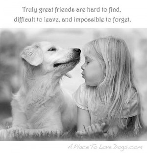 dog love and loyalty quotes quotesgram