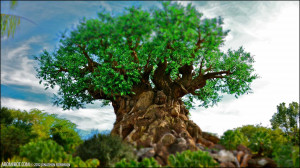 Disney Animal Kingdom Tree...