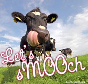 Livestock valentine from ranch house designs. Cow valentine