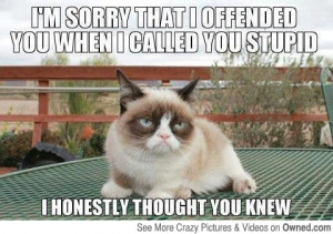 sorry_i_offended_you_540.jpg