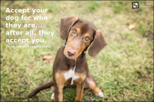 AS DOGS WOULD SAY: DOG QUOTE 02