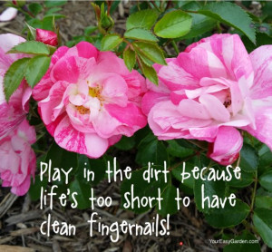 Garden Quotes to Bring Cheer and Sooth the Soul