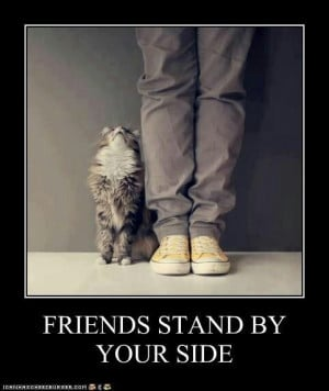 Friends stand by your side