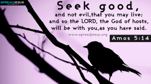 AMOS 5-14 BIBLE QUOTES IMAGES,BIBLE QUOTES HD-WALLPAPERS,FACEBOOK ...