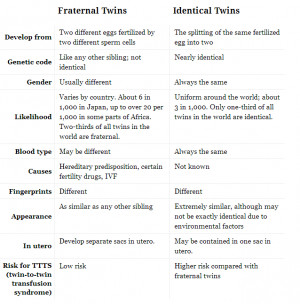 identical twins poems