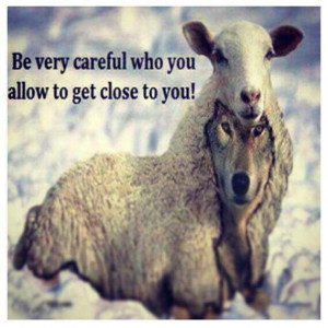 Wolves In Sheeps Cloth...
