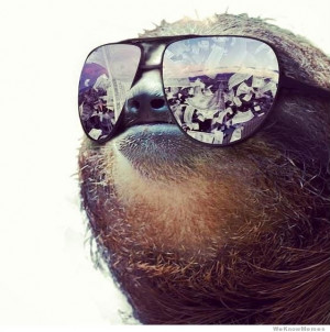 30 of the Greatest Sloth Memes, Gifs, and Comics enjoy!