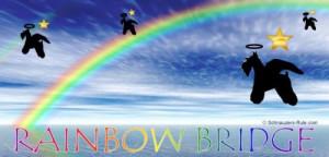 Rainbow Bridge Poem Dogs Pictures Picture