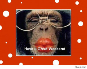 Happy weekend - Funny Pictures, Funny Quotes, Funny Videos - 9LoLs.com
