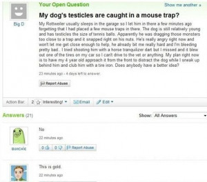 my dog s testicles are caught in a mouse trap funny facebook status