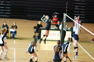 sophomore outside hitter volleyball quotes for outside hitters