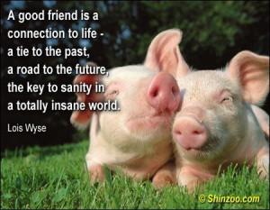 Lost friend friendship quotes (12)