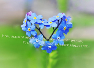 Quotes About Husbands And Kids: The Picture Of Blue Flower With Quote ...