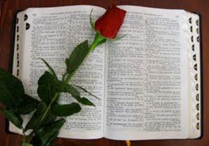 Tags: Bible, Inspirational Bible verses