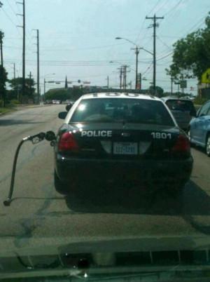 Dumb Cops