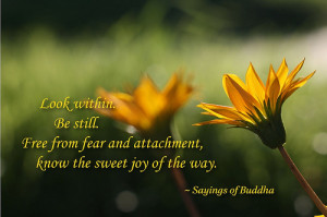 Tags: buddha , buddhist , Buddhist Quotes , buddhist sayings