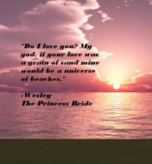 The Princess Bride Quote