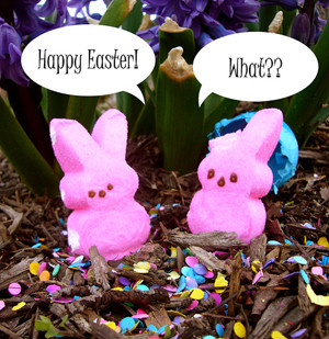 Easter Peeps Pictures, Candy Shops and Chocolate Museum