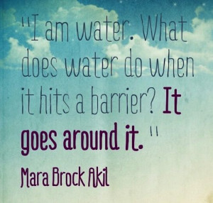 ... water do when it hit a barrier? It goes around it. - Mara Brock Akil