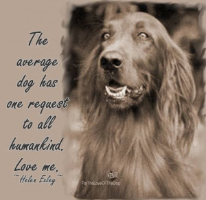 The Average Dog Has One Request To All Humankind. Love Me.
