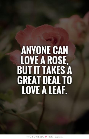 ... love a rose, but it takes a great deal to love a leaf Picture Quote #1