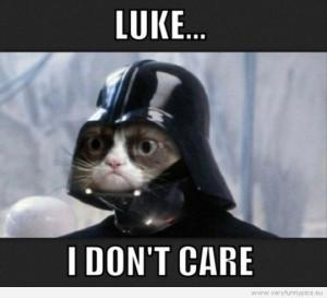 Funny Picture - Luke... I don't care - Grumpy cat