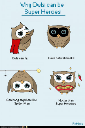funny pictures - Why Owls Can Be Superheroes