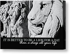 Zen For Your Thoughts Quotes Canvas Prints - PRIDE OF LIONS quote ...