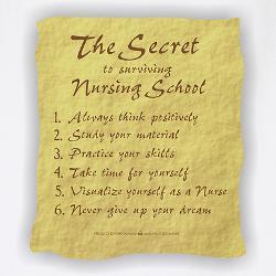 the_secret_to_nursing_school_bbq_apron.jpg?height=250&width=250 ...