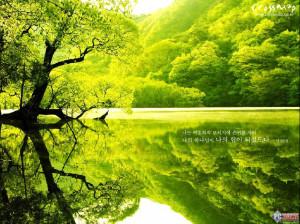 韩国版圣经 自然风景屏保 ( 1 /12)