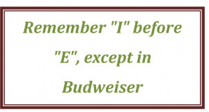 Funny Quotes & Sayings Beer