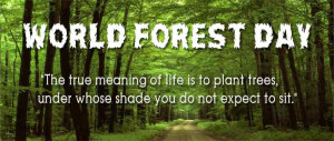 Home > Quotes > World Forest Day > World Forest Day Quotes