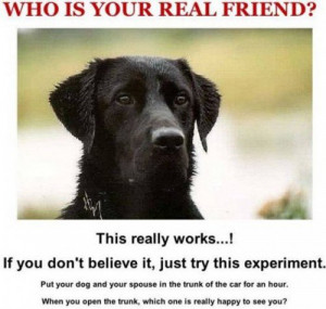 ... Dog quotes with photos , Dog quotes with Pictures , Funny Dog Quotes