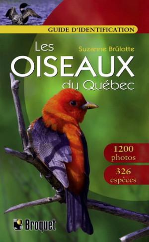 Oiseaux Québec guide identification Br. - SUZANNE BRULOTTE