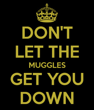 Dont Let The Muggles Get You Down Quote