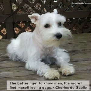 person who has never owned a dog has missed a wonderful part of ...