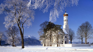 Winter scenery Nature Landscape