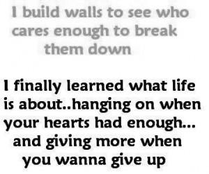 home images build walls build walls facebook twitter google+ pinterest ...
